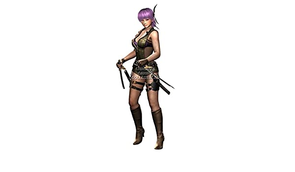 Amazon.com: CGC Huge Poster - Ninja Gaiden Ayane 3 Razors ...