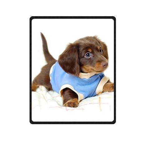 Perfecto de perro salchicha manta de forro polar mantas suave tamaño 40 x 50 cm (
