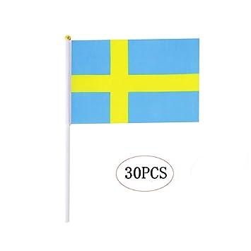 Amazon.com: Bandera de palo internacional, mini banderas ...
