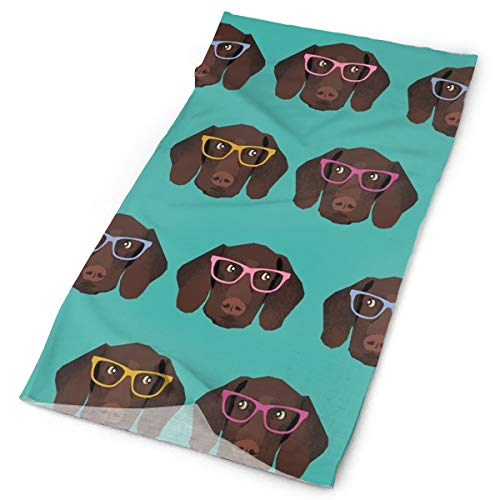 ART TANG Outdoor Multi-use Elastic Seamless Headband German Shorthaired Pointer in Glasses Bandana Headwrap Headscarves Fashion Magic Scarf ()