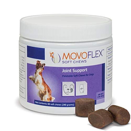 MoVoFlex Joint Support Soft Chews for Medium Dogs (60 Count) | Veterinarian Formulated, Gluten-Free
