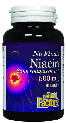 Natural Factors Niacine Pas Rincer Capsules 500mg, 90-Count