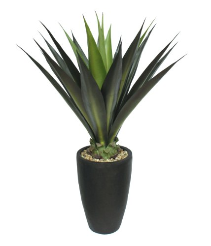 Laura Ashley Realistic Silk Faux Giant Aloe Plant with Contemporary Planter, Green/Black