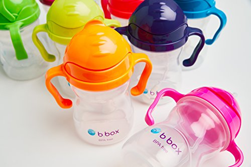 bbox-Sippy-Cup-Replacement-Straws-and-Cleaner