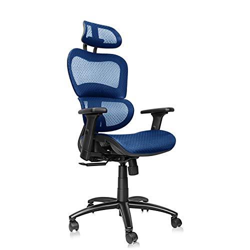 Mysuntown Office Mesh Chair, Ergonomic Task Chair with Back&Lumbar Support, Adjustable Headrest & Adjustable Armrests (Blue) ()