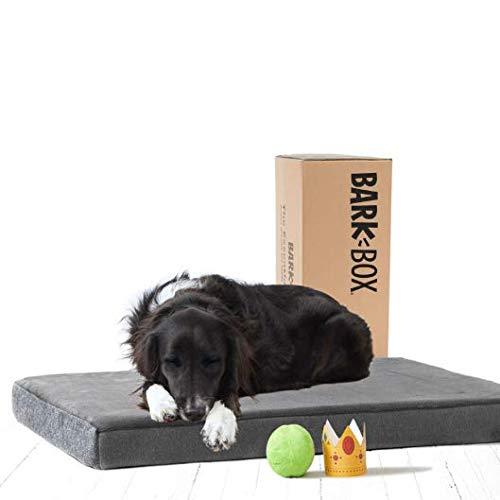 BarkBox Memory Foam Dog Bed | Plush Orthopedic Joint Relief Mattress Machine Washable + Removable Cover; Waterproof Lining, Includes Squeaker Toy | Large | Grey