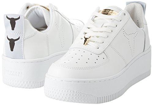 Windsor Smith Racerr, Sneaker Donna