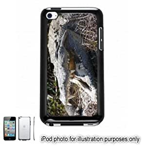Crocodile Head Photo Apple iPod 4 Touch Hard Case Cover Shell Black 4th Generation