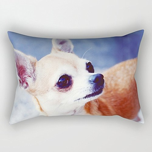[Loveloveu 20 X 30 Inches / 50 By 75 Cm Dogs Throw Pillow Covers,each Side Is Fit For Outdoor,deck Chair,pub,office,seat,teens Boys] (50's 60's Rock And Roll Costumes)