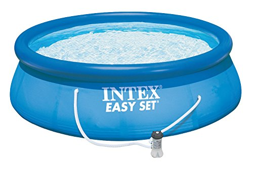 Easy Set Pool Ladder (Intex 15ft X 42in Easy Set Pool Set with Filter Pump, Ladder, Ground Cloth & Pool Cover)