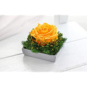 Forever rose box - Yellow, Preserved rose, Timeless rose box, Eternal Rose, Forever flowers, Eternal rose, Preserved flower composition 45