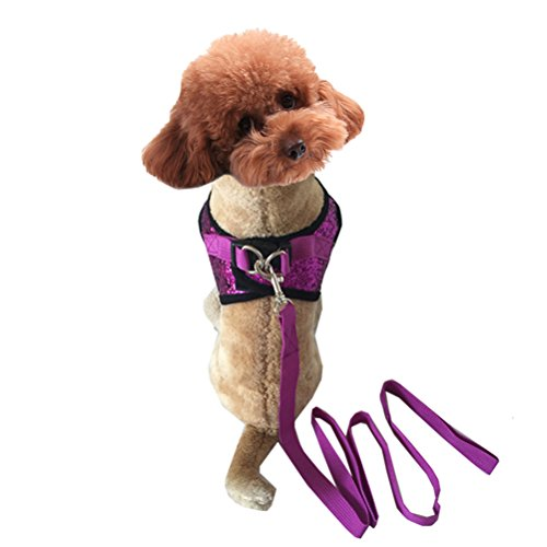 Uniquorn 2017 New Fashion Dog Chest Back Traction Rope Dog Performance Service Dog Out Of The (Rasta Costume Melbourne)