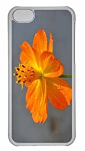 Customized iphone 5C PC Transparent Case - Tagetes Lucida Mexican Marigold Personalized Cover