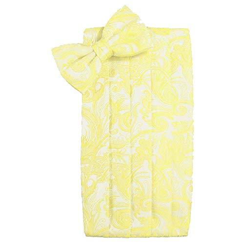(Men's Tapestry Cummerbund & Bow Tie Set - Many Colors (Sunbeam))