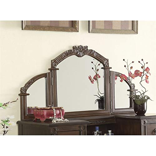 ACME 06541 Ashton Mirror, Oak Finish