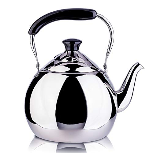 ROYDOM Whistling Tea Kettle Stainless Steel Teapot, 2-Liter Teakettle for Stovetop Induction Stove Top, Fast Boiling Heat Water Tea Pot Maker 2.1-Quart
