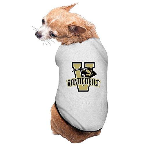 Boston Terrier Breed Standard - 5