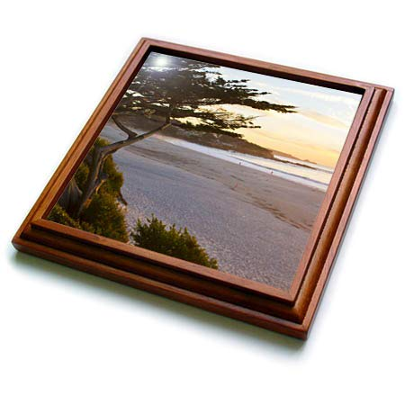 - 3dRose Danita Delimont - California - Carmel, California, cypress tree and waves at sunset on ocean. - 8x8 Trivet with 6x6 ceramic tile (trv_314602_1)