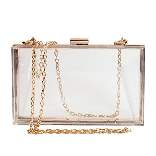 Cute Clear Acrylic Box Clutch Bag for Women/Girls, Sporting Event Gameday & Concerts Venue Stadium Approved Crossbody Purse Handbag with Gold Chain Strap