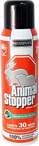 Messina Wildlife AS- 073161 As-U-Sc1 Animal Stopper 15 Oz Spray Can, Ready to Use Liquid (Animal Stopper)