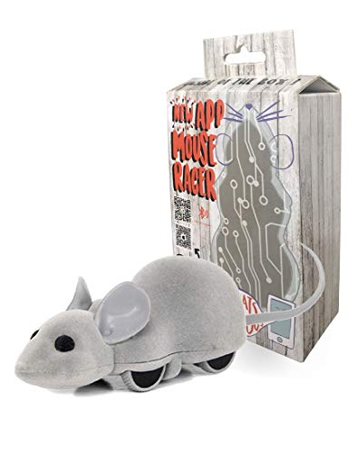 Remote Control Mouse - Ito Rocky Interactive Cat Chase Toy | Plays by Smartphone Control Pair with iPhone or Android