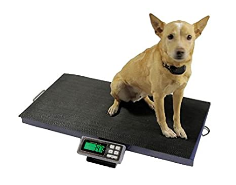 LCVS-180K -- 180 KG x 0,05 KG balanza veterinaria ligera y económica, con la función