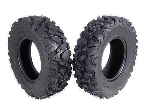 Big Horn Tires - 2