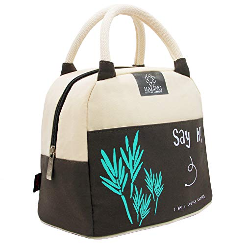 Insulated Cooler Lunch Tote Handbag - Durable Canvas Fabric with Interior Lining Insulation for Lunch Containers Breastmilk Drinks Sandwich Breakfast Keep Food Warm Cold