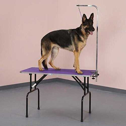 Folding Grooming Table with Arm & Loop Strong Groomers Tabletop for Pet & Dogs(Large - 48