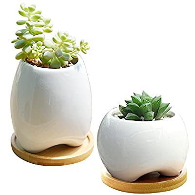 GeLive Elephant White Ceramic Succulent Planter Flower Pot Window Box
