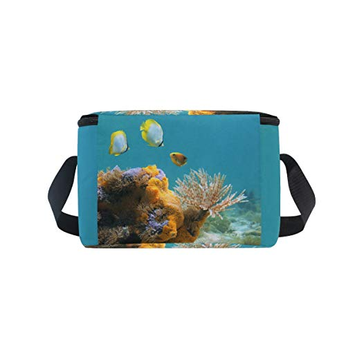 Colorful Life Shoulder Strap for Lunchbox Duster Cooler Sponges Lunch Worm Underwater Fish Bag Picnic q6HPEX