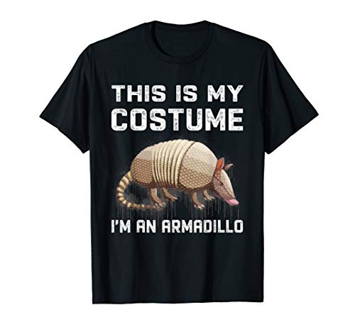 Holiday Armadillo Costume (This Is My Costume I'm An Armadillo T-Shirt Funny)