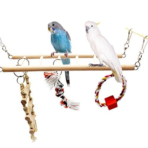 Loegrie pour animal domestique Oiseau Parrot Ladder Hamac balançoire à mâcher en bois à suspendre Jouets perruche calopsitte élégante Logres