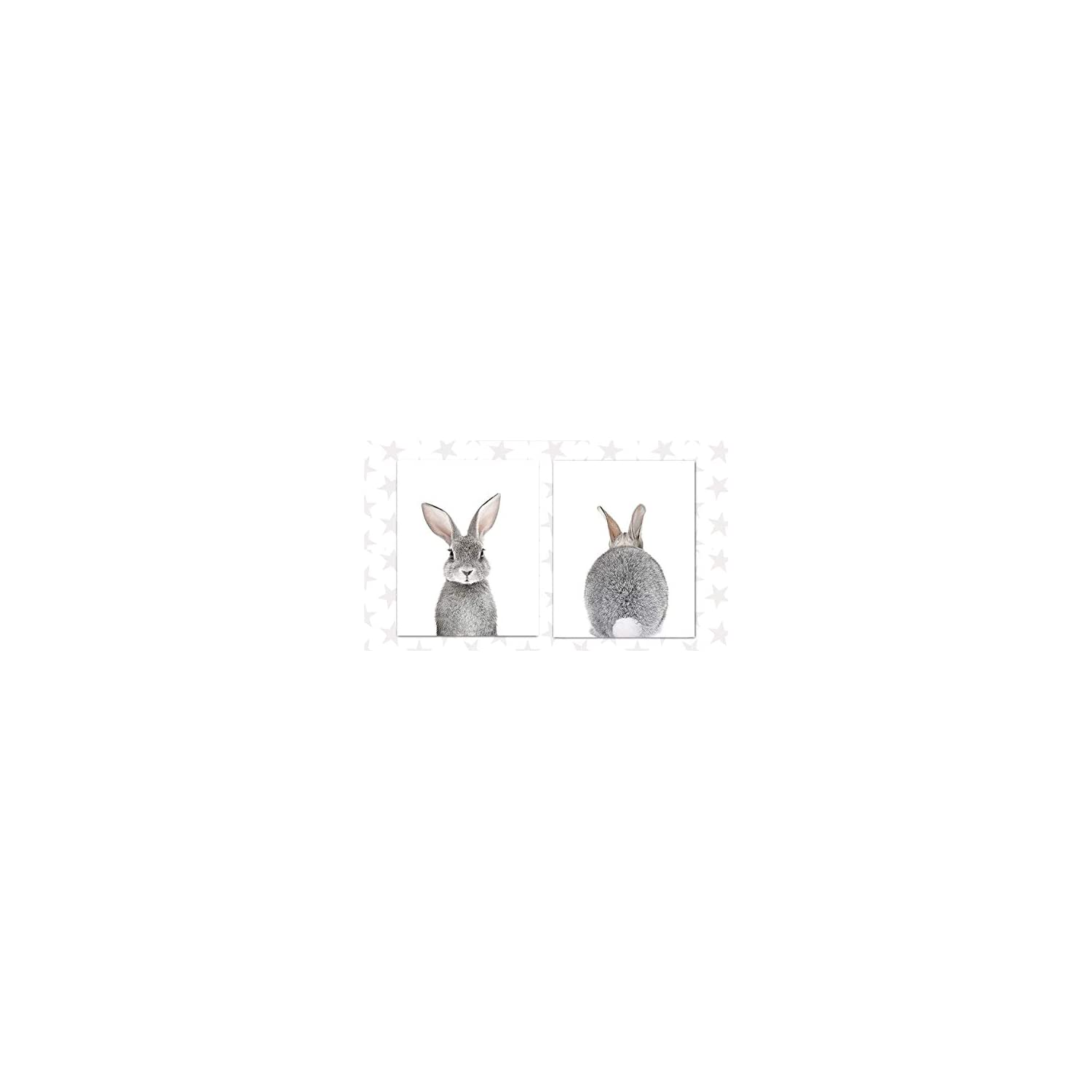 Designs by Maria Inc. Baby Nursery Wall Decor Art – Set of 2 (UNFRAMED) Wall Artwork 8×10 Baby Bunny Front and Back Photographic Print