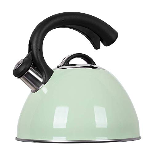 ROCKURWOK Tea Kettle, Stovetop Whistling Kettle, Stainless Steel, 2.63-Quart, Mint Fizzy Green