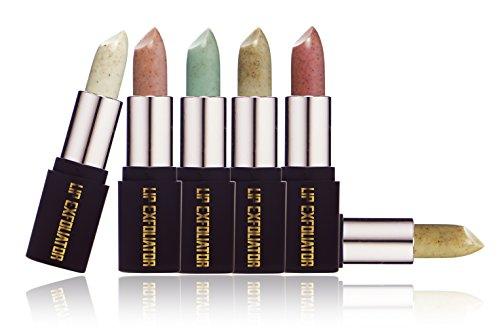 SXC Cosmetics Exfoliating and Hydrating Lip Exfoliator Scrub Set of 6 Natural Flavors, 0.15oz each (Brown Sugar, Mint, Almond, Apple, Vanilla & (Apple Vanilla Sugar)