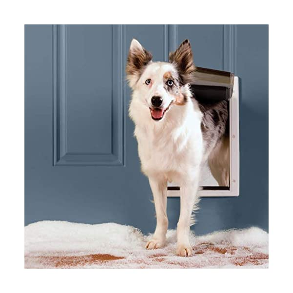 PetSafe Extreme Weather Dog and Cat Door – Aluminum or Plastic Pet Door – Small, Medium, Large and X-Large