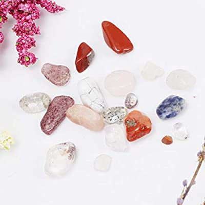 Rock /& Mineral Collection Geology Gem Kit in Clear Case Mixed Minerals