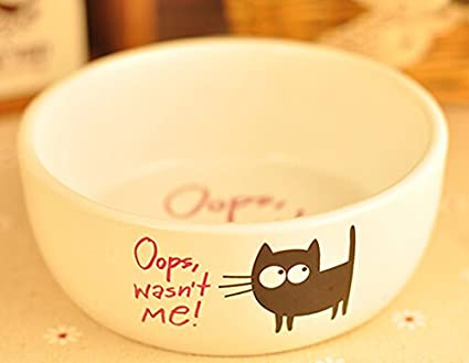 Amazon Com Pet Bowl Bowl Teddy Dog Food Pot Cute Cat Bowl Cat Food