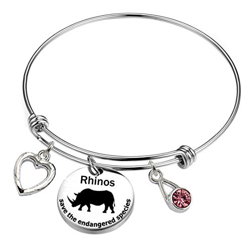 YOYONY Rhinos-save the endangered species series-Inspirational/LOVE/Positive quotes/Thankful/Beauty/Praise/Religious/Meaningful Charm Bracelets. (Rhinos-save the endangered species) by YOYONY