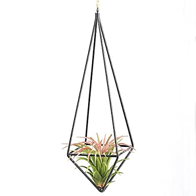 Modern Rustic Art Style Freestanding Hanging Metal Tillandsia Air Plant Rack Holder Black 10 inches Height Quadrilateral Pyramid Shape Geometric Hollow Flower pots, No Plants Included: Kitchen & Dining