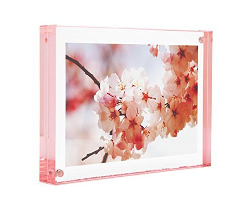 Color Edge Magnet Frame by Canetti-Pastel Rose 5x7 inch by Canetti