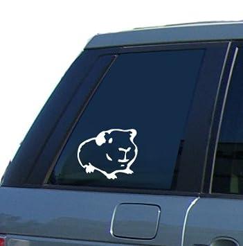 Guinea Pig Car Window Sticker Vinyl Decal By SCA ART Amazonco - Car window stickers amazon uk