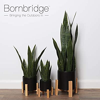 Bornbridge Artificial Snake Plant with Mid Century Plant Stand - Sansevieria Plant in Modern Planter - Artificial Plants with Indoor Plant Stand - Faux House Plants (Medium / 1 Pack): Home & Kitchen