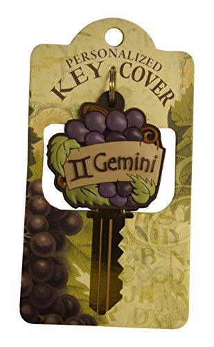 personalized-key-covers-key-hook-gemini-421530065