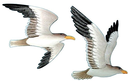 2 Metal Flying Gull Wall Plaques - Acrylic Metal Wall Plaque