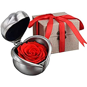 Coxeer Preserved Rose Flower, Forever Rose Never Withered Rose, Upscale Immortal Flowers, Fresh Roses, Eernal Life Flowers Proposal Wedding Birthday for Women Mom Gril Her 102