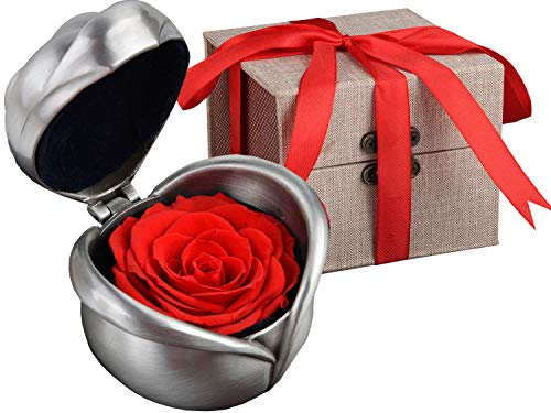 Coxeer Preserved Rose Flower, Coxeer Forever Rose Never Withered Rose, Upscale Immortal Flowers, Fresh Roses, Eernal Life Flowers Proposal Wedding Birthday Valentine's Day Gifts for Women Mom Gril -