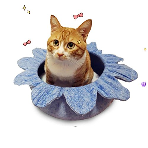 Amazon.com : DAN Luxury Handmade Flower-Shaped Felt Cat Bed Nest, Green : Sports & Outdoors