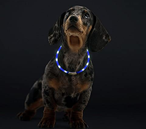 EASYDOG LED Dog/Cat Collar, USB Rechargeable, Adjustable Silicone Flashing Necklace, Improved Dog Visibility & Safety - Lighted Cat Collars
